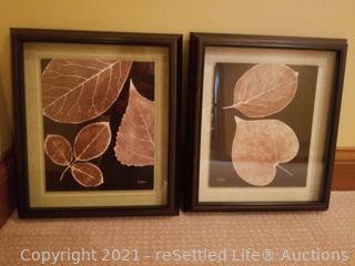 Leaf Prints In Black Frames