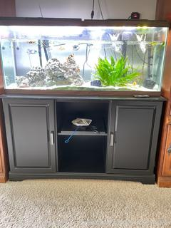 Fish Tank with Components and Stand