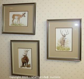 Trio of Prints by R.Dormam